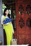 Elegante asiatische Dame Lizenzfreie Stockfotografie