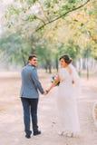 Elegante attraktive Braut und Bräutigam, die draußen im Park aufwirft Veew-frob Rückseite von Jungvermähltenpaaren stockfoto
