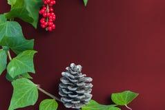 Elegante Blattebereschenbeere und -kegel auf einfachem Kirschhintergrund Stockfotografie