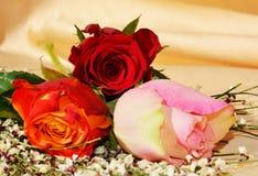 Elegante bloemen, symbolen van hartstocht royalty-vrije stock afbeelding