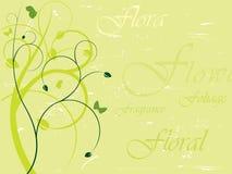 Elegante bloemenachtergrond Stock Illustratie