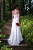 Elegante Braut Stockfoto