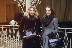 Elegante dames royalty-vrije stock afbeelding
