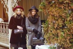 Elegante dames royalty-vrije stock fotografie