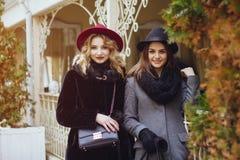 Elegante dames royalty-vrije stock foto's
