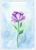 Elegante del fiore dell'acquerello e morbido viola Immagini Stock Libere da Diritti