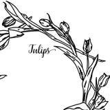 Elegante en leuke illustratie Tulpen Druk voor textiel en industriële doeleinden En een mooi romantisch kader van vector illustratie
