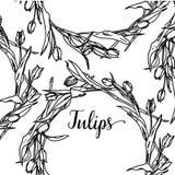 Elegante en leuke illustratie Tulpen Druk voor textiel en industriële doeleinden En een mooi romantisch kader van stock illustratie