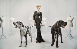 Elegante, ernstige dame met twee reuzehonden stock foto