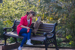 Elegante Frau, die auf einer Bank mit Katze sitzt Grüner Hintergrund und erstaunliche Ansicht Lizenzfreies Stockbild