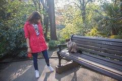 Elegante Frau, die nahe Bank mit Katze steht Grüner Hintergrund und erstaunliche Ansicht Lizenzfreie Stockfotografie