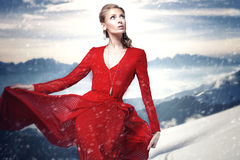 Elegante Frau im roten Kleid Lizenzfreie Stockfotografie