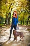 Elegante gehende Frau ihr großer Hund im Park, Serbien Stockbild