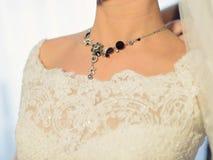 Elegante halsband royalty-vrije stock foto's