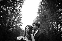 elegante, hoch entwickelte Brautpaare Stockbilder