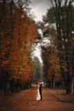 elegante, hoch entwickelte Brautpaare Lizenzfreies Stockfoto