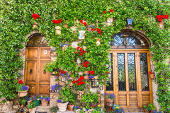Elegante houten deur Royalty-vrije Stock Foto's