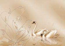 Elegante Kaart Stock Foto's