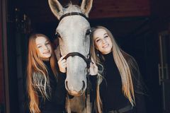 Elegante Mädchen mit einem Pferd in einer Ranch lizenzfreie stockbilder