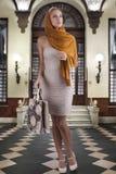 Elegante maniervrouw met het winkelen zak stock afbeelding