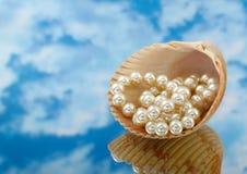 Elegante parels over in shell met hemel Stock Afbeelding