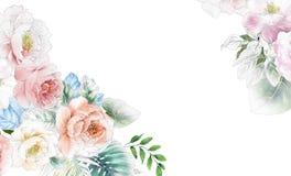 Elegante Rosen und Pfingstrosenblumen vektor abbildung