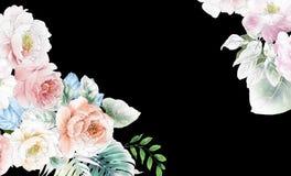 Elegante Rosen und Pfingstrosenblumen lizenzfreie abbildung