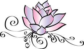 Elegante Roze Lotus Flower Drawing Stock Afbeeldingen