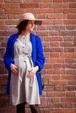 Elegante schwangere Frau Stockbilder