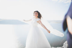 Elegante stilvolle glückliche Hochzeitspaare, Braut, herrlicher Bräutigam auf dem Hintergrund von Meer und Himmel Stockbild