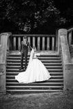 Elegante stilvolle junge Paare Lizenzfreies Stockfoto
