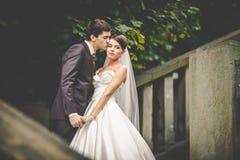 Elegante stilvolle junge Paare Lizenzfreie Stockfotos