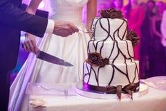 Elegante vrij jonge bruid en bruidegombesnoeiingscake Royalty-vrije Stock Afbeeldingen
