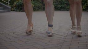 Elegante weibliche Beine, welche die Straße zurücktreten stock footage