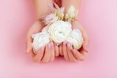 Elegante weibliche Hände mit Rosa manikürten Nägeln lizenzfreies stockfoto