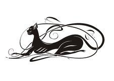 Elegante zwarte kat Stock Fotografie