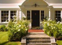 Eleganter Eingang 45 Stockfotos