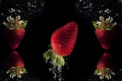 Eleganter Erdbeerhintergrund lizenzfreie stockfotos