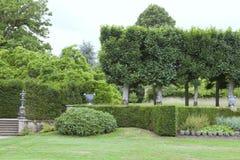 Eleganter landschaftlich gestalteter Garten mit Hecke, Topiary, Bäume lizenzfreie stockbilder