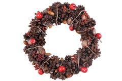 Eleganter Weihnachtskranz Lokalisiertes Archivbild Stockbilder