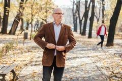 Elegantes Gehen der alten Männer Stockbild