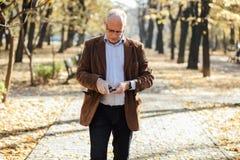 Elegantes Gehen der alten Männer Lizenzfreie Stockfotografie
