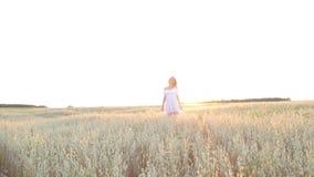 Elegantes Land-weibliches Schönheits-Kleidergehendes Feld stock video footage