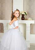 Elegantes Mädchen Lizenzfreie Stockbilder