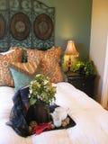 Elegantes Schlafzimmer Stockfotos