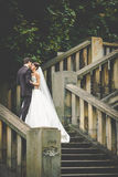 elegantes stilvolles junges Braut- und Bräutigamküssen Lizenzfreie Stockfotos