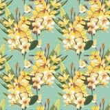 Elegantie naadloos patroon in uitstekende stijl met Plumeria-bloemen Tropische illustraties royalty-vrije illustratie