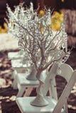 Elegantly tasteful decorated with crystals wedding decorate tree, summer, vintage, glamor.  Royalty Free Stock Images
