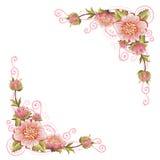 Elegantt buktar blomman tränga någon Royaltyfri Fotografi