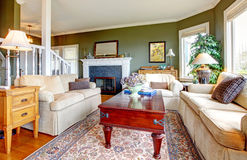 Elegantt grönt vardagsrum för klassiker arkivbild
